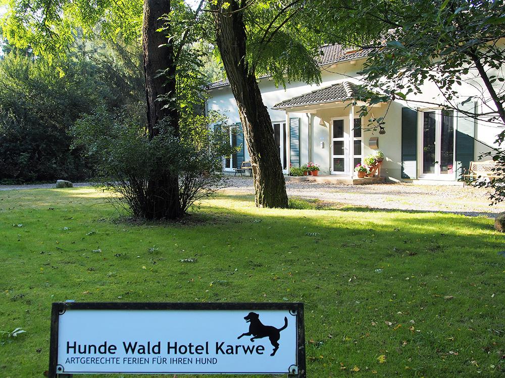 https://www.hunde-wald-hotel-karwe.de/wp-content/uploads/2017/11/hundewaldhotel.jpg